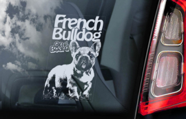 Franse Bulldog - French Bulldog - V04