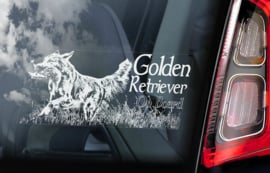 Golden Retriever V02