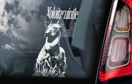 Mexicaanse Naakthond - Xoloitzcuintle V01 - Mexican Hairless Dog