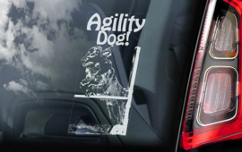Agility Dog (Flatcoated Retriver) V01