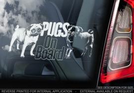 Mopshond - Pug Dog V05