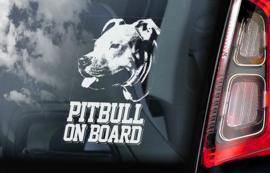 Pitbull V01