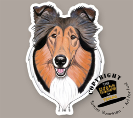 HEADS MAGNEET COLLIE SABLE