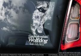Tsjechoslowaakse Wolfhond - Czechoslovakian Wolfdog  V04