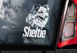 Shetland Sheepdog - Sheltie  V01