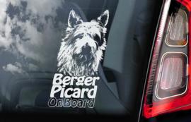 Picardische Herdershond - Berger Picard   V01