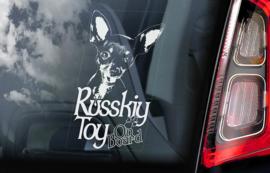 Russkiy Toy (Russische Toyterrier) V01