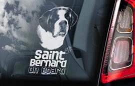 Sint Bernard - Saint Bernard V03