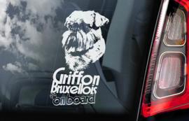 Griffon Bruxellois V01