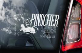Pinscher V01