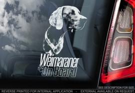 Weimaraner V04