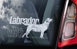 Labrador Retriever V12