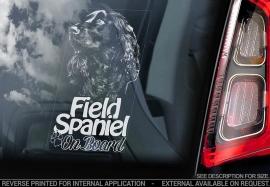 Field Spaniel - V01