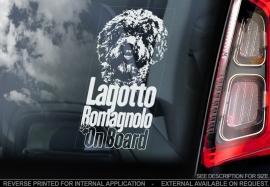 Lagotto Romagnolo V01