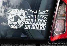 Engelse Bulldog - English Bulldog - V03