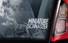 Dwerg Schnauzer - Miniature Schnauzer V04