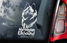 Norwegian Elkhound V02