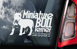 Bull Terrier Miniature V01