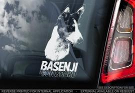 Basenji V02
