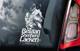 Belgische Herder: Laekense V01