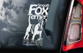 Fox Terrier gladhaar -  Fox Terrier Smooth V01