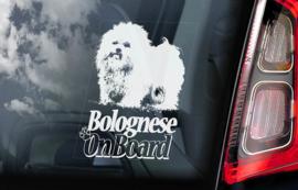Bolognezer - Bolognese V01