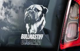 Bullmastiff V01