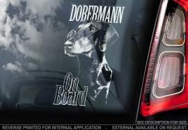Dobermann ongecoupeerd V02