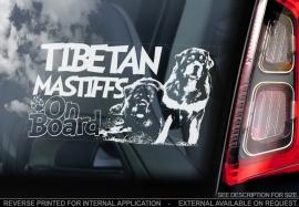 Tibetaanse Mastiff - Tibetan Mastiff  V02