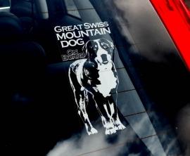 Grote Zwitserse Sennenhond - Great Swiss Mountain Dog - Grosser Schweizer Sennenhund V01