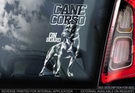 Cane Corso  V02