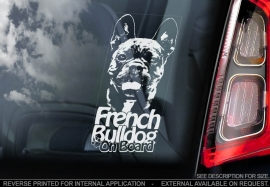 Franse Bulldog - French Bulldog - V02