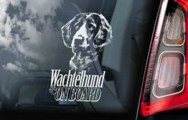 Duitse Wachtelhund - German Spaniel - Wachtelhund V01