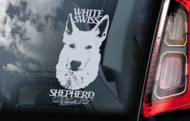 Zwitserse witte Herder - Vit Herdehund - White Shepherd V02