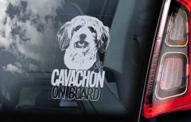 Cavachon V01