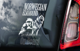 Norwegian Elkhound V01