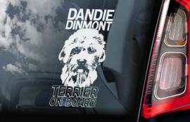 Dandie Dinmond Terrier V01