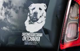 Sredneasiatskaïa Ovtcharka - Centraal  Aziatische Owcharka - Central Asian Shepherd V02