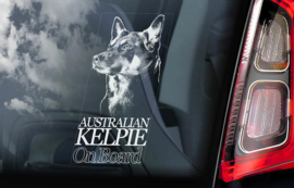 Australian Kelpie V01