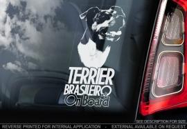 Terrier Brasileiro - Fox Paulisthina V01