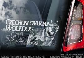 Tsjechoslowaakse Wolfhond - Czechoslovakian Wolfdog  V07