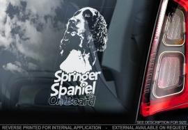 Springer Spaniel V02