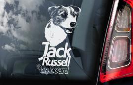 Jack Russel Terrier V02