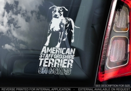 American Staffordshire Terrier V3