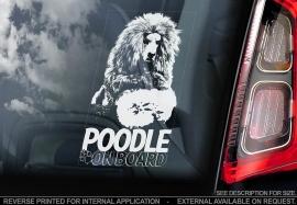 Poedel - Poodle V04