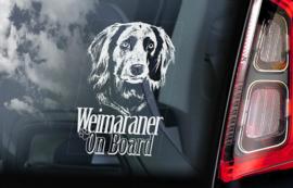 Weimaraner V02