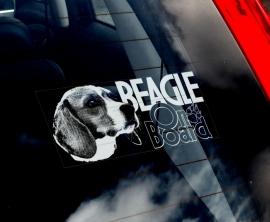Beagle V02