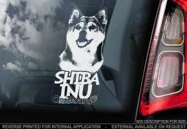 Shiba Inu V02
