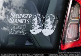 Springer Spaniel V04