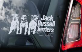 Jack Russel Terrier V05